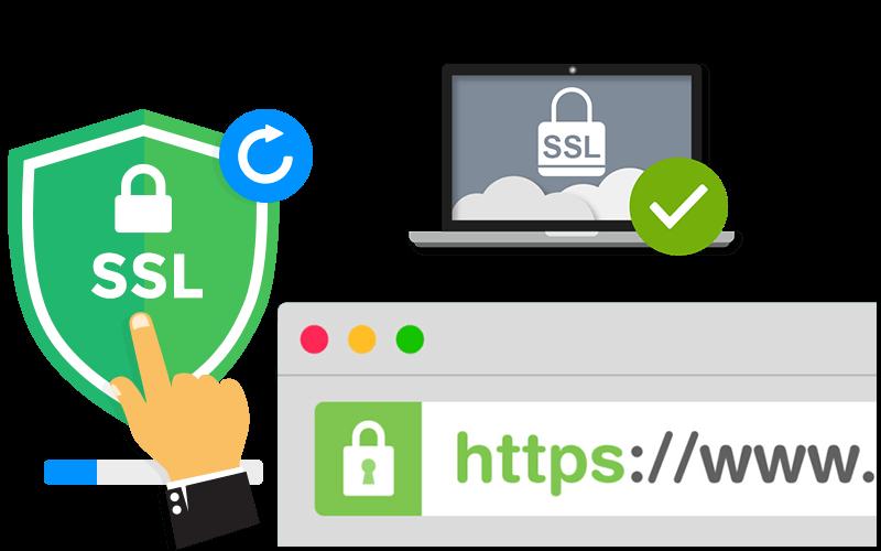 Amman SSL Certificate